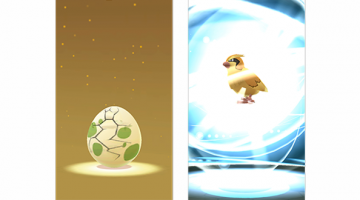 Pokémon GO: Hatching and Evolving
